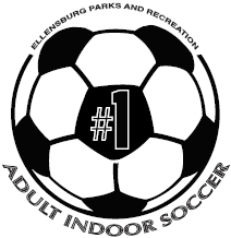 Adult Indoor Soccer Logo